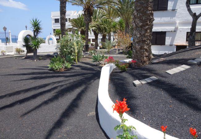 Apartamento en Puerto del Carmen - Costa Luz 2 bed 2 bath Standard apts.